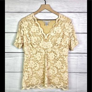 CAbi cream Lace Top Size XL  perfect for holidays